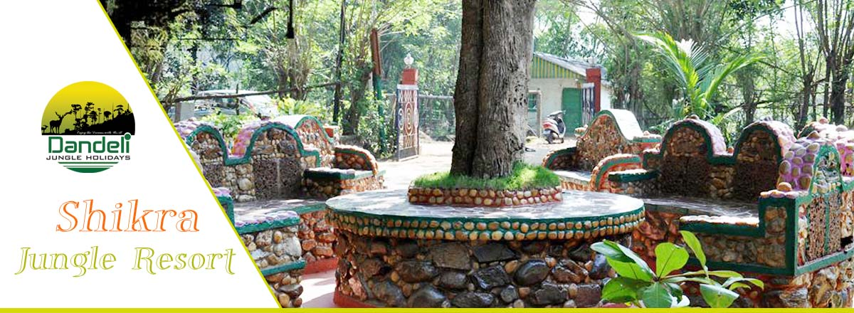 Jungle Shikra Resort